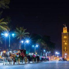 Partez à la redécouverte de la perle du sud « Marrakech»