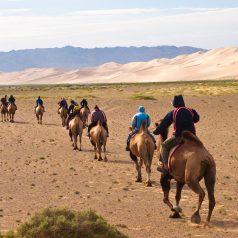 Équitation et excursion : le meilleur de la Mongolie !