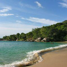 Passer un séjour de rêve aux Seychelles au cœur de ses plus belles plages