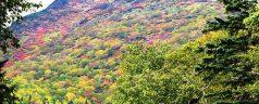 3 parcs à découvrir en randonnée à Hokkaido