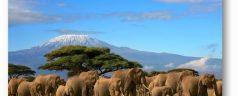 À l'assaut des trésors naturels de la Tanzanie