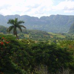 Le voyage vertical à Cuba