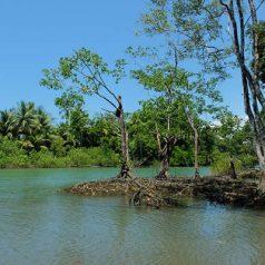 5 lieux incontournables à voir lors d'un séjour au Costa Rica