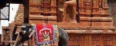 Les formalités pour visiter l'Inde
