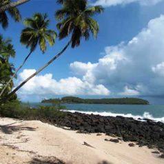 Visite aisée de la Guyane à bord d'une voiture de location