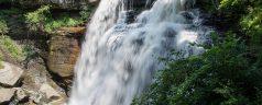 Brandywine Falls 11