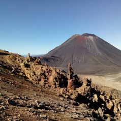 Partir à la découverte des paysages de la Nouvelle-Zélande