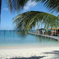 Vacances ensoleillées : découvrir les charmes d'Aruba