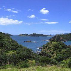 Voyager en Nouvelle-Zélande pour découvrir la baie des îles