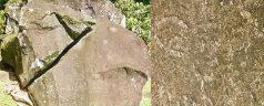 Roches_gravées_du_Site_Archéologique_de_Trois-Rivières_en_guadeloupe