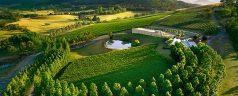 Voyage œnologique en Australie : du bon vin et des régions fascinantes