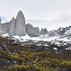 Découvrir la Patagonie : les endroits à ne pas rater