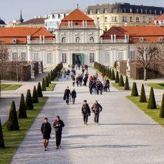 Séjour à Vienne : les endroits à visiter pour un voyage mémorable